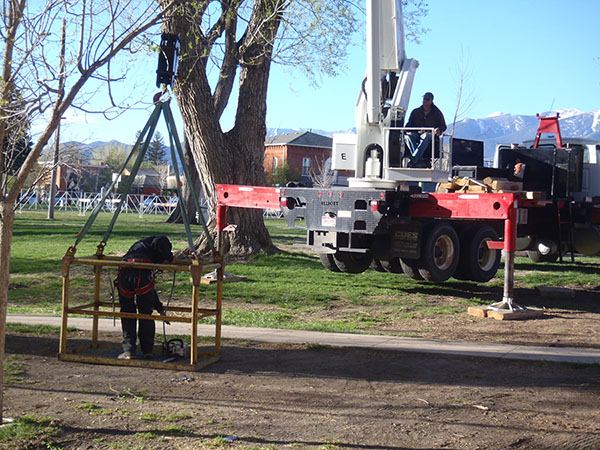 Grand Junction Tree Trimming